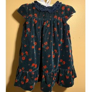 Janie and Jack Blue Velvet Rose print dress